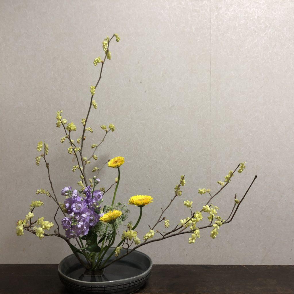花材:土佐水木 ガーベラ ストック