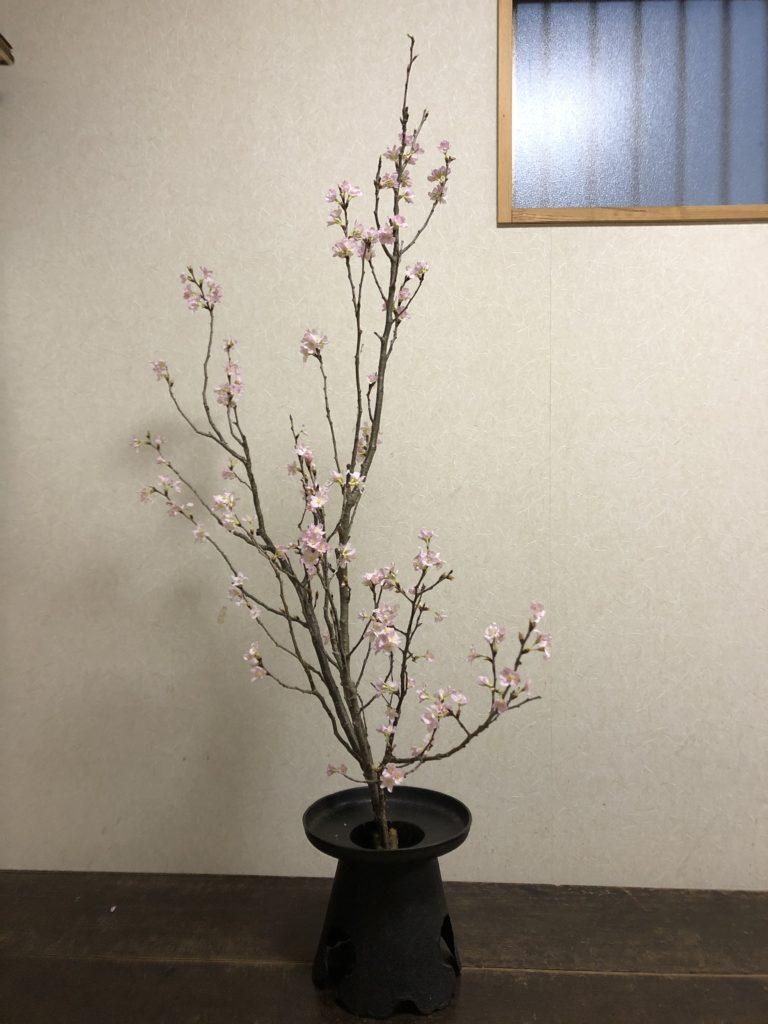 啓翁桜の一種いけ